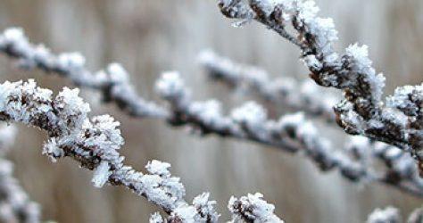 fi_winterpause